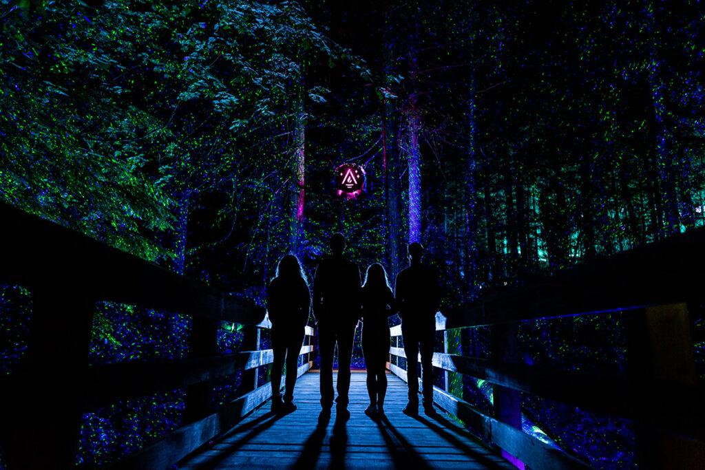 Vallea Lumina - A Multimedia Night Walk In Pursuit Of Hidden Wonders