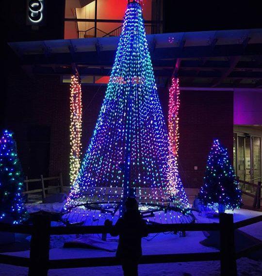 CELEBRATION OF LIGHTS: 401 FESTIVAL LANE