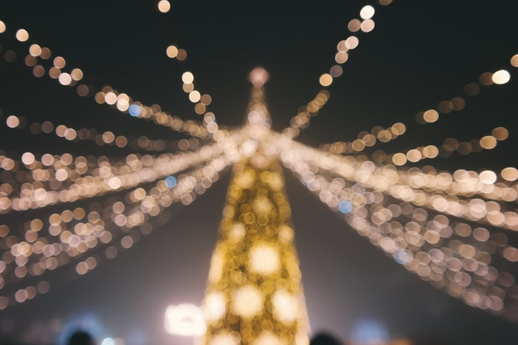 A soft-focus shot of a Christmas tree strung with lights.